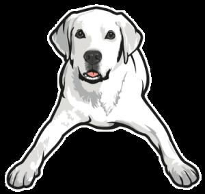 Tucker Pup's Logo