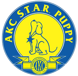 AKC STAR Puppy Certification Chicago