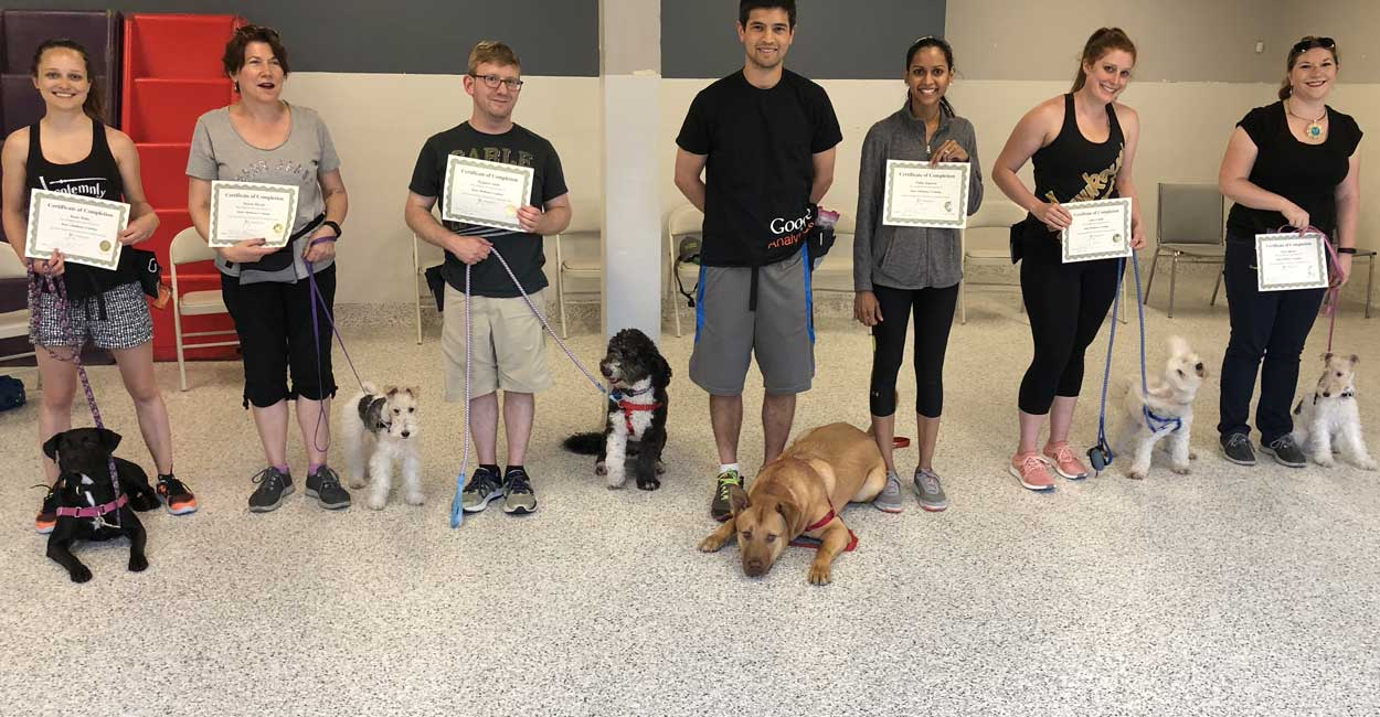 Dog Training Class