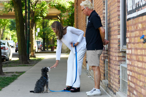 Dog Training Private Lessons Chicago